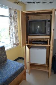 Телевизор и холодильник в послеродовой палате