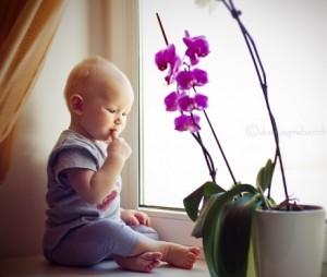 растения и малыш