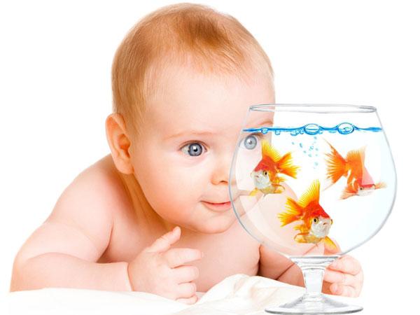 малыш 6 месяцев