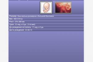 Приложение «Календарь беременности»